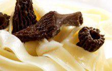 Pasta con morchelle