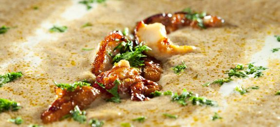 come cucinare funghi surgelati - cucinarefunghi.com - Come Cucinare I Funghi Surgelati