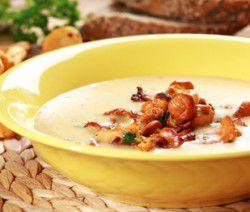 Crema di zuppa di funghi gallinacci con le erbe