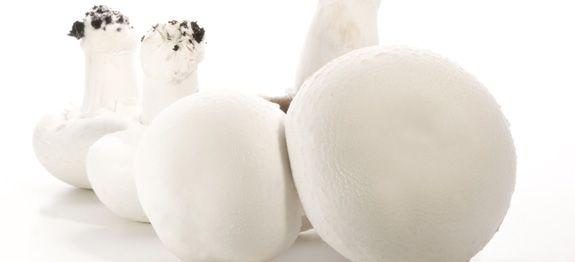 Come cucinare funghi champignon