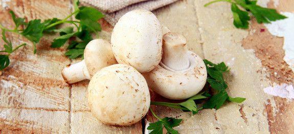 come cucinare funghi freschi