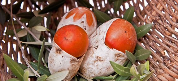 Cucinare funghi ovoli for Cucinare funghi